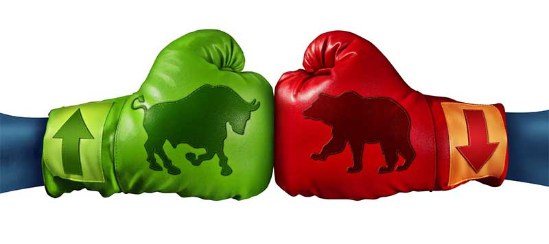 Boxing gloves iwth bull and bear embedded in